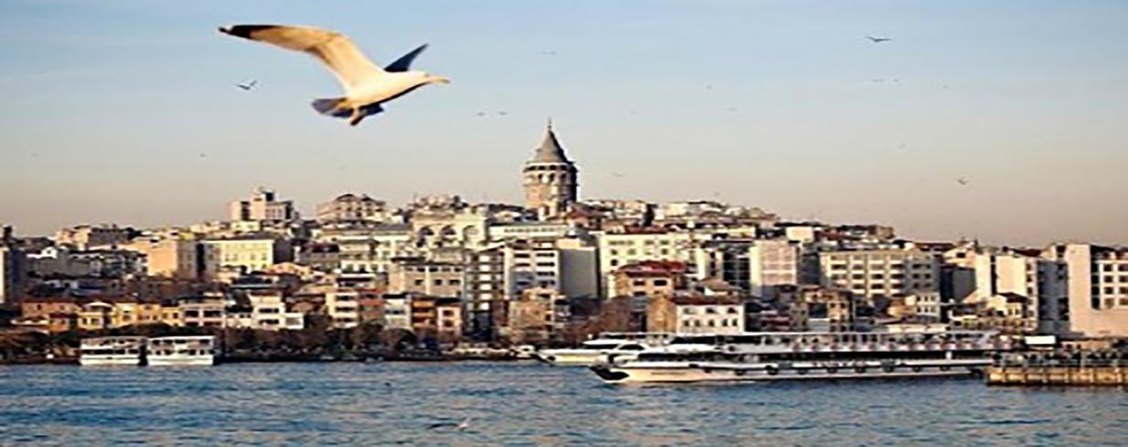 فرص الاستثمار المربحة في تركيا