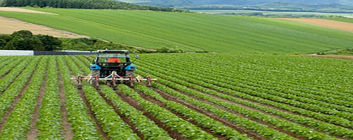 4 Key Measurements of Investing in Rural Areas