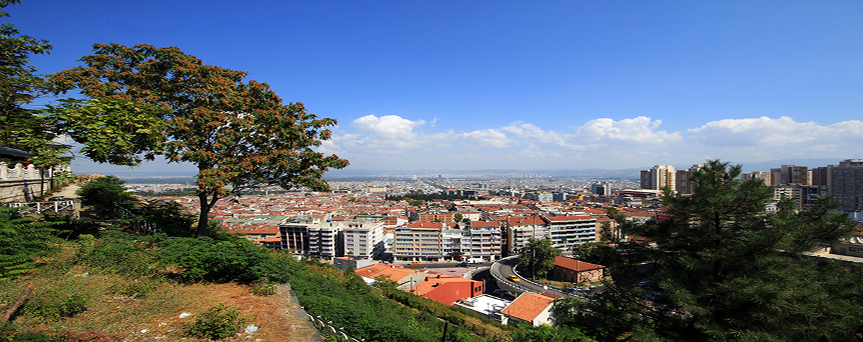 Do You Need a Property Manager in Bursa?