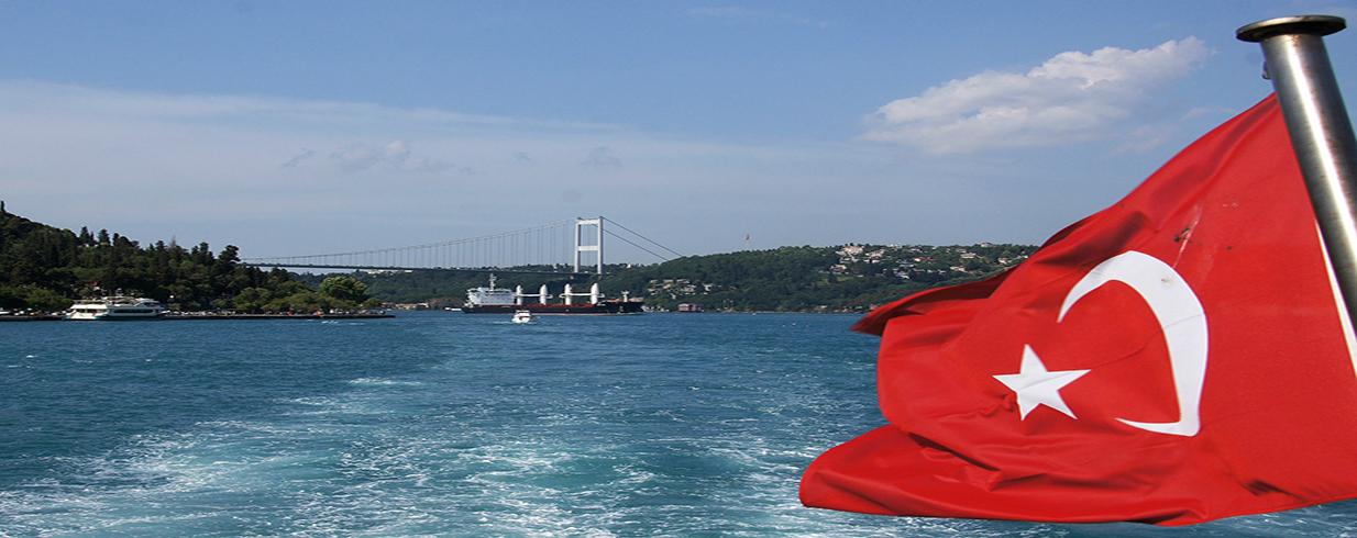 Process of Applying Turkish Citizenship