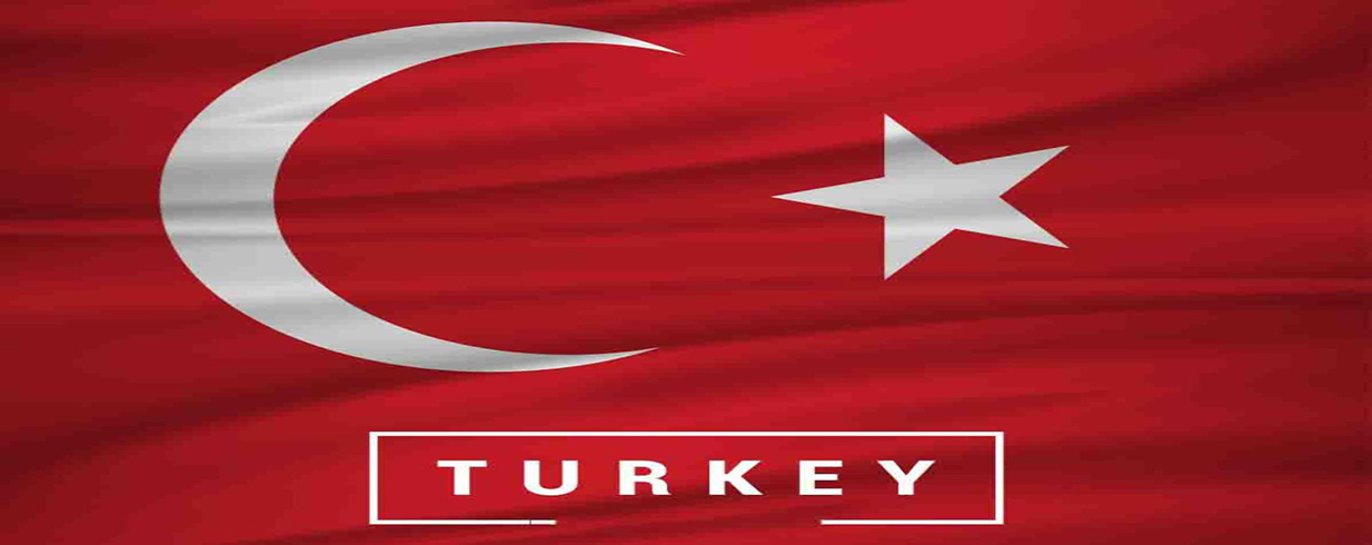 How to Apply for Turkish Citizenship Online?