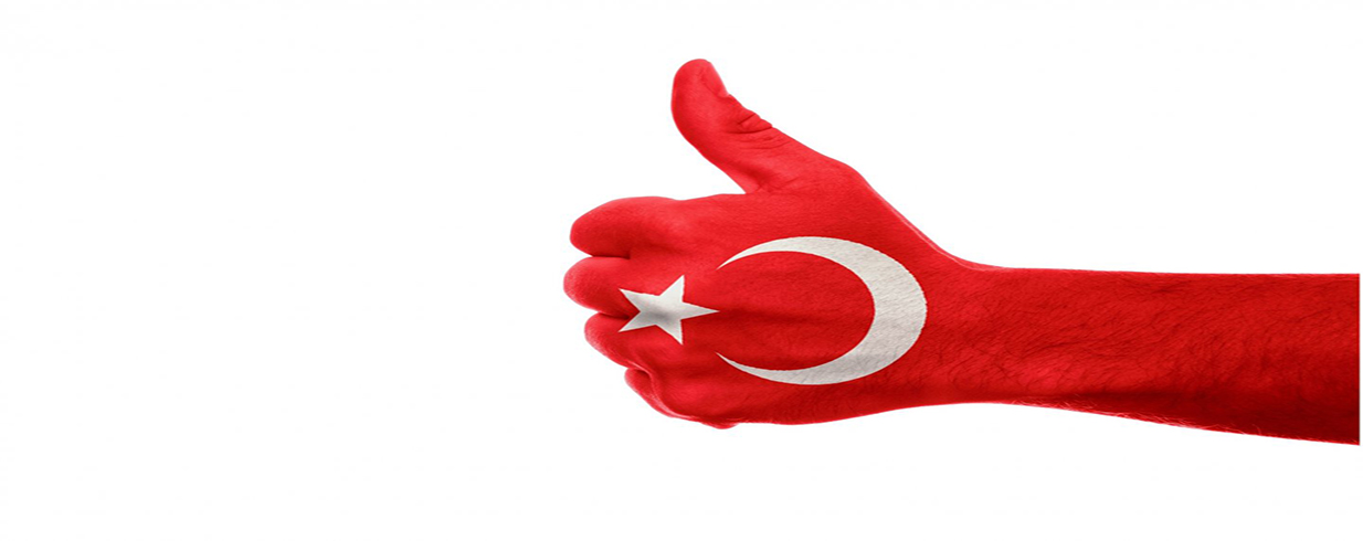 How Does Turkish Citizenship Application Process Work?